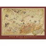 Art-Puzzle-4308 La Carte de Piri Reis