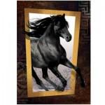 Art-Puzzle-4376 Black Horse