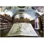 Art-Puzzle-4379 Bibliothèque