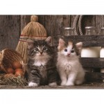 Art-Puzzle-4515 Chatons