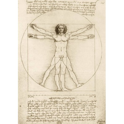 Art-by-Bluebird-Puzzle-60009 Leonardo Da Vinci - The Vitruvian Man, 1490