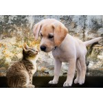 Bluebird-Puzzle-70004 Kitten and Puppy