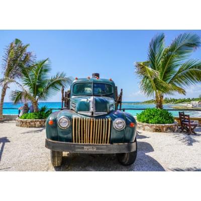 Bluebird-Puzzle-70020 Old Truck