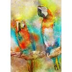 Bluebird-Puzzle-70032 Parrots