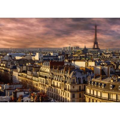 Bluebird-Puzzle-70038 Paris, France