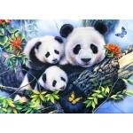 Bluebird-Puzzle-70079 Panda Family
