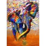 Bluebird-Puzzle-70101 African Colours