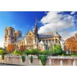 Bluebird-Puzzle-70224 Cathédrale Notre-Dame de Paris