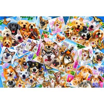Bluebird-Puzzle-70371 Selfie Pet Collage