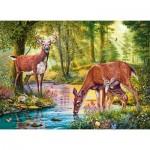 Castorland-030132 Woodland Stream