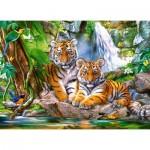 Castorland-030385 Tiger Falls
