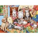 Castorland-030439 Cat Family