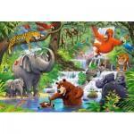 Castorland-040315 Pièces XXL - Jungle Animals