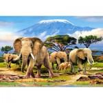 Castorland-103188 Kilimanjaro Morning