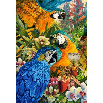 Castorland-103485 David Galchutt: Amazon