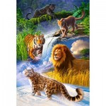 Castorland-103553 Big Cats