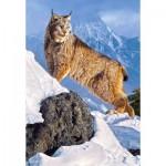 Castorland-103560 Lynx