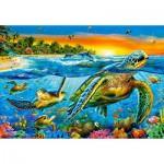 Castorland-103652 Underwater Turtles