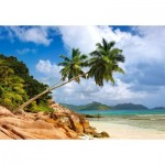 Castorland-103713 Secret Beach, Seychelles