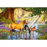 Castorland-103737 Horses by the Stream