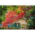Castorland-103768 Jardin Japonais