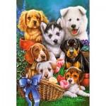 Castorland-104048 Puppies