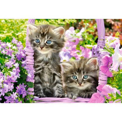 Castorland-104086 Kittens in Summer Garden