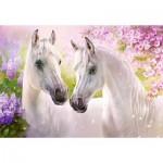 Castorland-104147 Romantic Horses