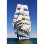 Castorland-104239 Under Full Sail
