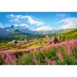 Castorland-104512 Tatras, Poland