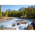 Castorland-150762 Canada, Parc National de Jasper : Rivière Athabasca