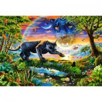 Castorland-151356 Panthère au Crépuscule