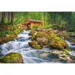 Castorland-151783 Watermill