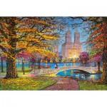 Castorland-151844 Central Park, New York