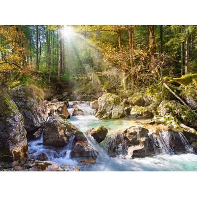 Castorland-200382 Le Ruisseau de la Forêt