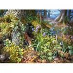 Castorland-200764 From Rusland Woods