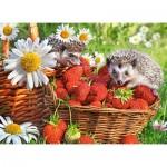 Castorland-222025 Strawberry Dessert