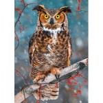 Castorland-27347 Great Horned Owl