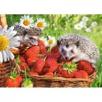 Castorland-27484 Strawberry Dessert