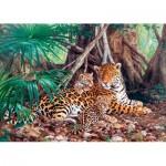 Castorland-300280 Jaguars dans la forêt