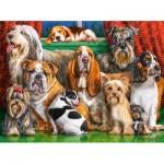 Castorland-300501 Dog Club