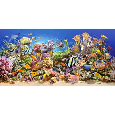 Castorland-400089 La vie sous-marine