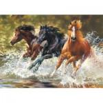 Castorland-51823 Splash !