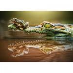 Castorland-52318 The Daredevil Frog