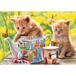 Castorland-52356 Tea Time