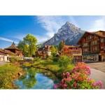 Castorland-52363 Kandersteg, Suisse