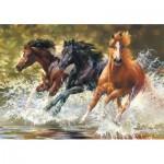 Castorland-52585 Splash