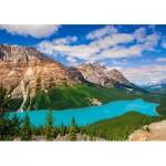 Castorland-53056 Peyto Lake, Canada