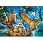 Castorland-53322 Owl Family