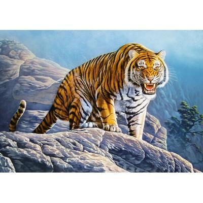 Castorland-53346 Tiger on the Rocks